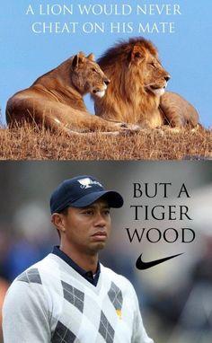 Lejon, tigrar och f�rfaranden skilsm�ssa, oh my!