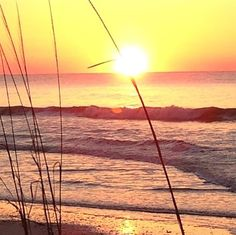 Especially when offset by splashing waves, a beautiful #sunrise can be a traveler's favorite part of the day. Photo of Hilton Head Island, #SouthCarolina by @bigdogyolo via Instagram