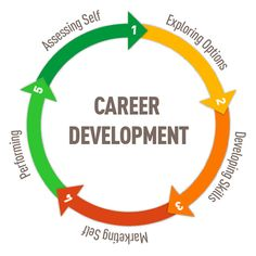 5 phases to develop your career plan: Assess - Explore - Develop - Market - Perform