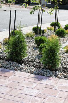 Garden Ideas, Landscaping, Sidewalk, Cottage, Gardening, Garten, Walkway, Casa De Campo, Yard Landscaping