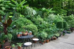 Amy Butler's garden, from Apartment Therapy.