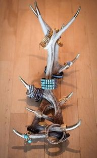 antler jewelry holder with gold tips for some glaming up!