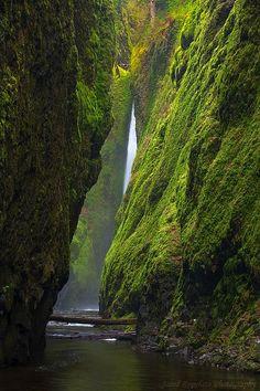 Oneonta Canyon Falls, Oregon - USA