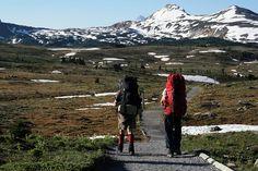 Mount Assiniboine hike: Day One Mount Rainier, Climbing, Hiking, Mountain, Adventure, Day, Nature, Travel, Walks
