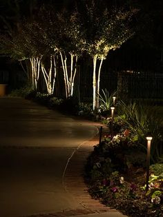 7 Reasons Why You Need Lighitng For Your Home by Landscape Lighting and Design Tropical Landscape Lighting, Outdoor Lighting Landscape, Landscape Lighting Design, Driveway Landscaping, Tropical Landscaping, Outdoor Landscaping, Landscaping Ideas, Driveway Fence, Driveway Lighting