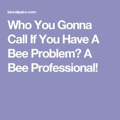 Who You Gonna Call If You Have A Bee Problem? A Bee Professional!