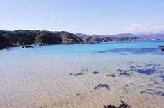 静岡県下田市の九十浜はシュノーケリングスポットとして人気があるビーチです 海の透明度がとにかく高くて入り江になっているから波も穏やか 砂浜はmくらいしかない小規模なビーチですが磯遊びにはおすすめですよ 人が多くないので人ごみが苦手な人には丁度良いかもしれません tags[静岡県]