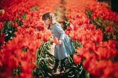 Tulip farm, tulip flower field, flower field photography, red flowers, wooden shoe tulip festival, Portland Oregon photography, Oregon children's photography, flower picking, red tulips