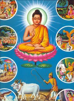 Life of Shakyamuni Buddha with pictures - PURE LAND BUDDHISM IS THE BEST TEACHING OF BUDDHA TO EVERY HUMAN BEING
