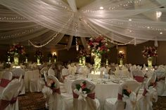 Like the ceiling with tulle and lights!-DEFINITELY LIGHTS!