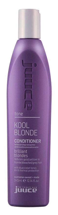 Kool Blonde Conditioner