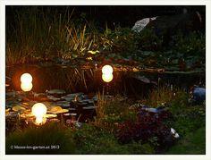 nacht im garten 2012-08