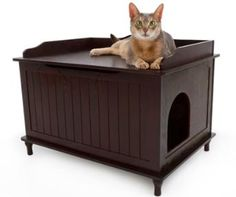 Litter Box - Designer Catbox Homepage