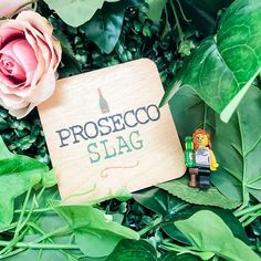 Give someone a good laugh with our brilliant prosecco slag coasters.  Available for order online. Prosecco, Coasters, Bird, Shop, Drink Coasters, Birds, Coaster Set, Store, Coaster