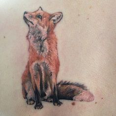 Foxy fox features ❤️ done today on my customer's back. Really enjoyed this piece - more realistic type work is welcome!! #fox #tattoo #tattoos #ttech #ink #inkjecta #leeds #ladytattooer #fusion #nature #wildlife #uk #mustapicandjamieson #tattooist #tattooer