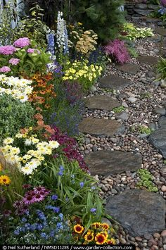 Stone pathway laid amongst pebbles plantings include Echinacea, Hydrangea, Astilbe, Marguerite and Achillea