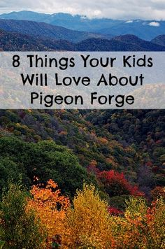 15 Things Your Kids Will Love About Pigeon Forge From zip lines to hiking to taking a spin on the Great Smoky Mountain Wheel at The Island, there's a lot for families to love about Pigeon Forge. Gatlinburg Vacation, Gatlinburg Tennessee, Tennessee Vacation, Vacation Trips, Vacation Spots, Vacation Ideas, Pigeon Forge Tennessee, East Tennessee, Family Vacations