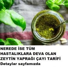 Hastalıklara deva zeytin yaprağı çayı