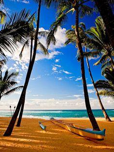 Blue and Gold, Maui, Hawaii