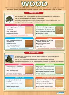 Wood | Design Technology Educational School Posters