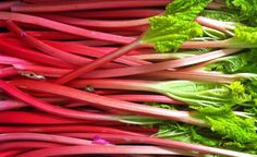 See How Many Calories in #Rhubarb