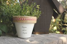 """Cindi Lauper's """"Thyme After Thyme"""" by PlantPuns on Etsy"""