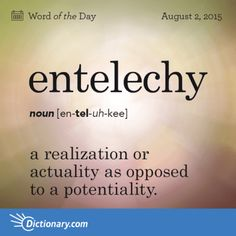 Entelechy definition, a realization or actuality as opposed to a potentiality. Unusual Words, Weird Words, Rare Words, Unique Words, Powerful Words, Cool Words, Fancy Words, Words To Use, New Words