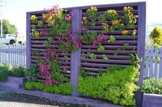 Turn your fence into a vertical garden with the addition of trellis along the whole length of your fence for plant hanging. Vertical Garden Design, Vertical Planter, Vertical Gardens, Colorful Plants, Green Plants, Garden Structures, Outdoor Structures, Outdoor Areas, Small Backyard Patio