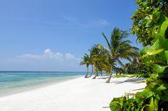 Tortuga Bay—Punta Cana, Dominican Republic. #Jetsetter