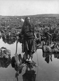 At the peak of the kauri gum digging industry there were gumdiggers in the north - Maori, Chinese, Malaysian and Yugoslav. Hawaiian Tribal, Hawaiian Tattoo, Tonga, Tahiti, Samoan Tribal, Filipino Tribal, Nz History, Polynesian People, Maori People
