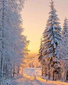 A beautiful winter landscape with lots of snow. Winter Sunset, Winter Scenery, Winter Love, Alaska Winter, Winter Pictures, Nature Pictures, Beautiful Pictures, Winter Photography, Nature Photography