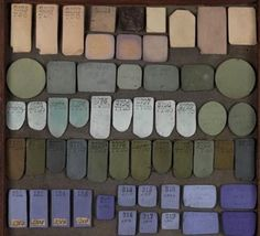 Color Palette