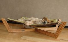 Kickstarter: Pet Lounge Studios Bambu Pet Hammock