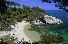 We have to go here! This beach near Palamós, on Spain's Costa Brava, is known as Platja de   Castell and is the only sandy beach on this part of the coast to have   escaped development.