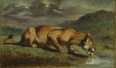 'Wounded Lioness' by Eugène Delacroix (Art Institute of Chicago, Chicago, IL) Modern Artists, French Artists, Eugène Delacroix, Tumblr, Art Institute Of Chicago, Picture Collection, Art Reproductions, American Art, Art Museum
