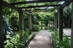 Beautiful pergola! Foxglove Spire Gardens at Tilba Tilba NSW.
