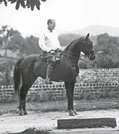 Antez (Harara x Moliah) 1921 chestnut stallion. Well represented in modern Davenport pedigrees. Antez matched Arabian speed records during his short racing career. Pictured with General Dickinson