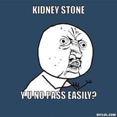 KIDNEY STONE Y U NO PASS EASILY?