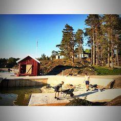 Sikre deg en helg eller uke i vårt sommerparadis idag! www.risoya.no
