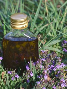 Healing Herbs, Perfume Bottles, Diy, Beauty, Lavender Flowers, Aromatherapy, Bricolage, Perfume Bottle, Do It Yourself