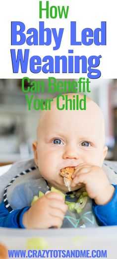 Weaning Toddler, Baby Led Weaning First Foods, Baby First Foods, Baby Weaning, Introducing Solids, Natural Parenting, Homemade Baby Foods, Baby Milestones, Meals For One