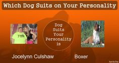 Check my results of Which Dog Suits on Your Personality Facebook Fun App by clicking Visit Site button