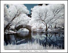 Stone Bridge @ Central Park
