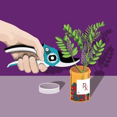 Paul Garland - Naturally Grown Medication