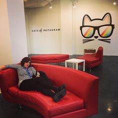 CatCon and chill? The #catsofinstagram lounge will be back this year at @catconla and better than ever. Stop by on the first floor to relax, meet other cat people, and take photos! Stop by our vendor booth for exclusive @cats of instagram and @cutepetclub products and don't forget to grab your VIP tickets to meet us (@kathrynelone & @eomidi) along with @pudgethecat - you'll get to walk away with limited edition merch not available at our booth! Tickets: catconla.com/tickets PC: @catladyland…