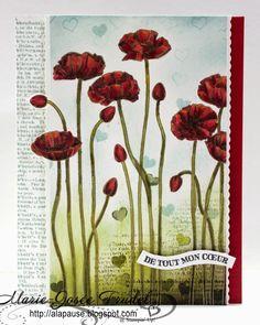 A La Pause: PLEIN ETÉ! - Pleasant Poppies, Amour pour toujours (Groovy Love), Point & Click, Dictionary,