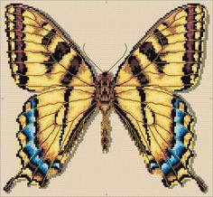 Swallowtail Butterfly Cross Stitch Chart Download   sewandso