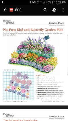 Butterfly garden design - south of the winter garden-Schmetterlingsgarten Design – südlich von Wintergarten Butterfly garden design – south of the winter garden, garden garden - Flower Garden Plans, Butterfly Garden Plants, Flower Garden Layouts, Flower Garden Design, Flower Bed Designs, Cut Flower Garden, Perennial Garden Plans, Hummingbird Garden, Garden Types