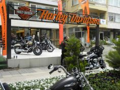 Avenue Garage Sale, Turkey, Bağdat Street, Harley-Davidson, Motorcycle