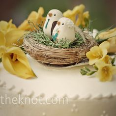 small wedding cakes was topped with a bird's nest.